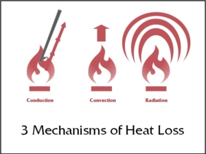 3_mechanisms_of_heat_loss