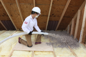 Installing_TAP_Pest_Control_Insulation_Original