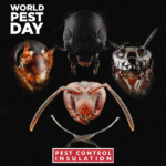 World Pest Day - Queen - June 6