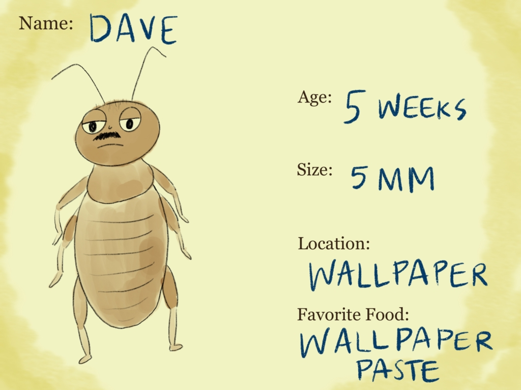 Dave, of the Family of Booklice